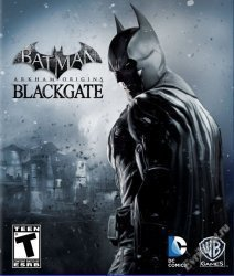Batman: Arkham Origins [v 1.0 + DLCs] (2013) PC | RePack от xatab